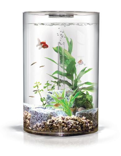 Biorb Fish Tanks, Biorb Accessories, Biube, & Biorb Supplies